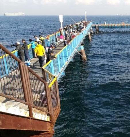 本牧海釣り施設の桟橋