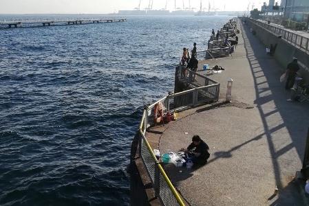本牧海釣り施設の護岸