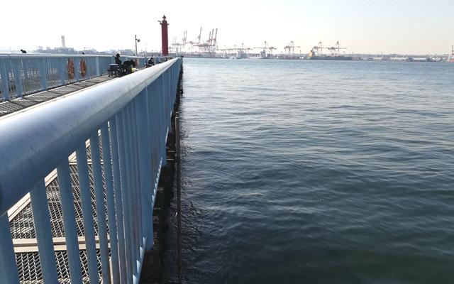 大黒海釣り施設の内側