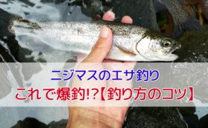 管理釣り場のニジマス釣り