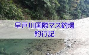 早戸川国際マス釣場の釣り
