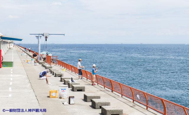神戸市立平磯海づり公園