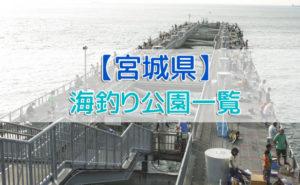 宮城県の海釣り公園