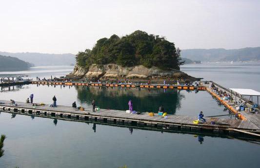 仮屋湾遊漁センター