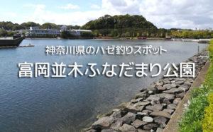 富岡並木ふなだまり公園のハゼ釣り