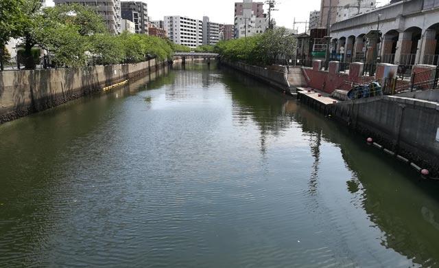 大岡川のハゼ釣り