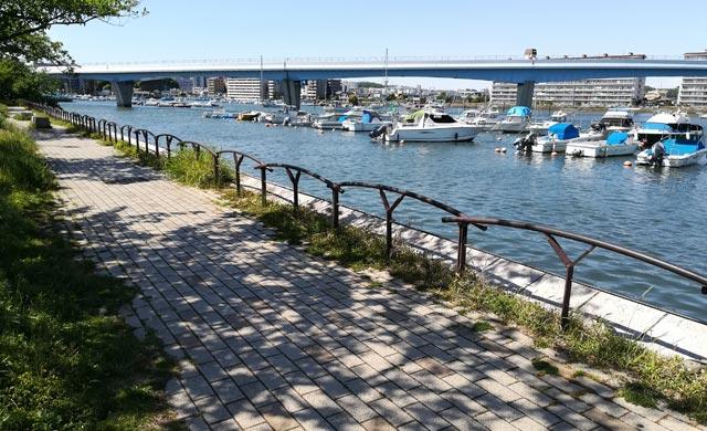 平潟湾のハゼ釣り場