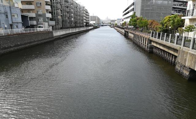 新山下運河のハゼ釣り