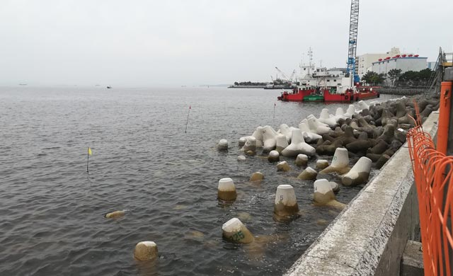 幸浦の新堤防