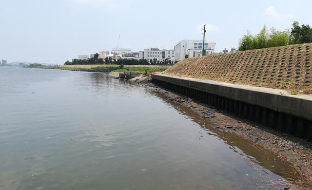 多摩川六郷橋のハゼ釣り