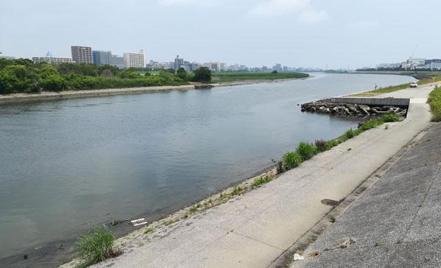 河川のルアーシーバス