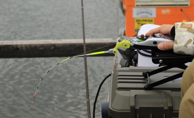 桟橋のワカサギ釣り