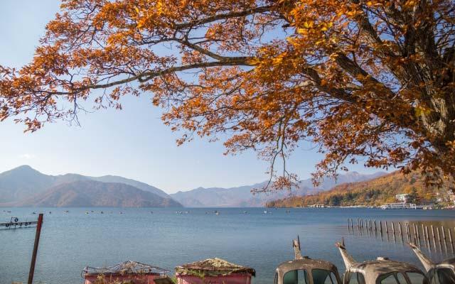 中禅寺湖のワカサギ釣り