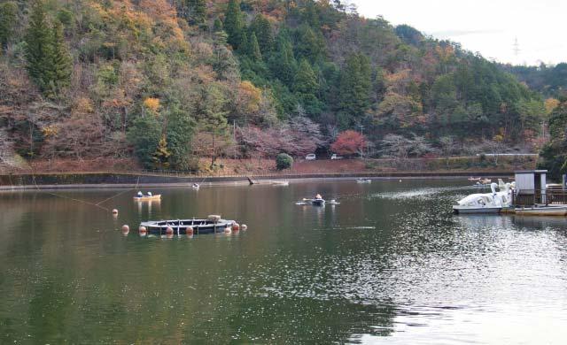 伊自良湖のワカサギ釣り